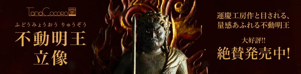 仏像フィギュア TanaCOCORO[掌]不動明王立像/ ふどうみょうおう りゅうぞう
